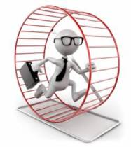 il-va-courir-7-marathons-dans-une-roue-de-hamster